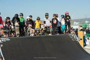 flakecup2012_13
