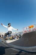 flakecup2012_300