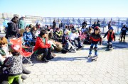 flakecup2012_47